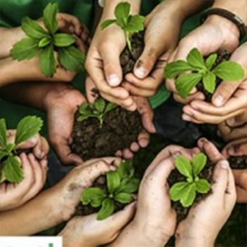 Osnivanje Nacionalne asocijacije zelenih krovova