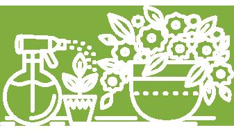 Spojite lepo i korisno - uzgajajte ukrasno i lekovite bilje